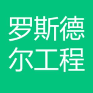 羅斯德爾汽車工程技術(北京)有限公司上海分公司 logo